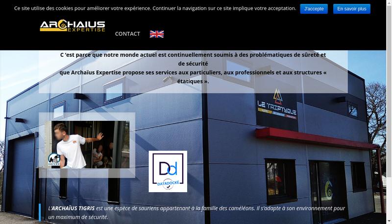 Capture d'écran du site de Archaius Expertise