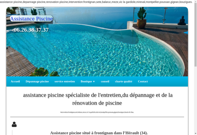 Capture d'écran du site de Assistance Piscines