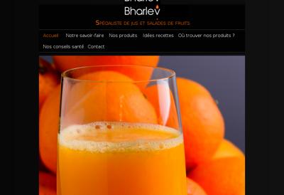 Capture d'écran du site de Bharlev Industries