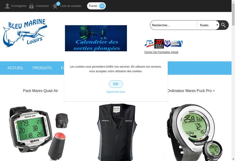 Capture d'écran du site de Bleu Marine Loisirs