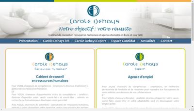 Capture d'écran du site de Carole Dehays Expert
