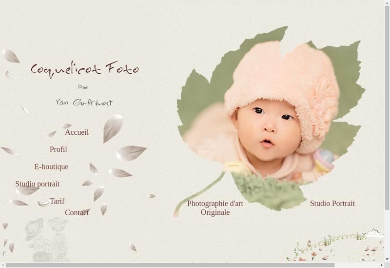 Capture d'écran du site de Ccfoto