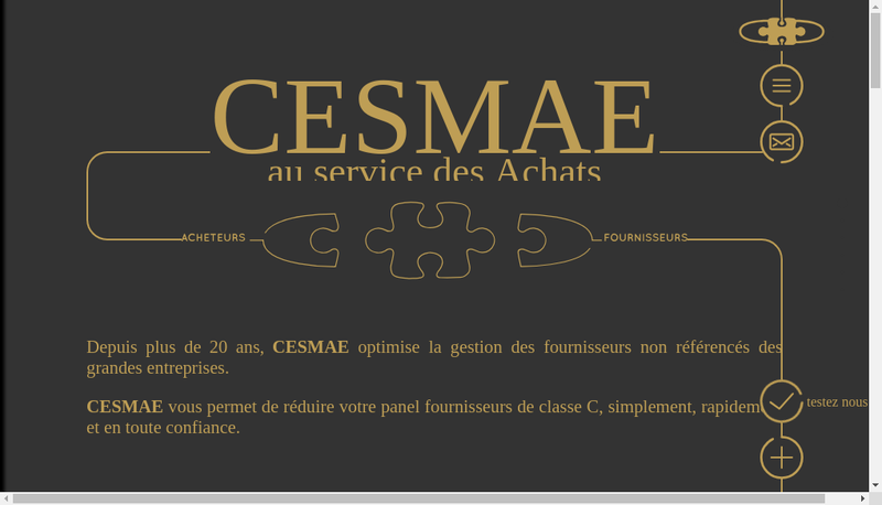 Capture d'écran du site de Cesmae SARL