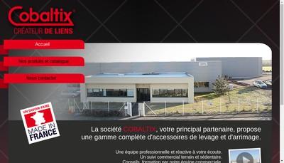 Site internet de Cobaltix