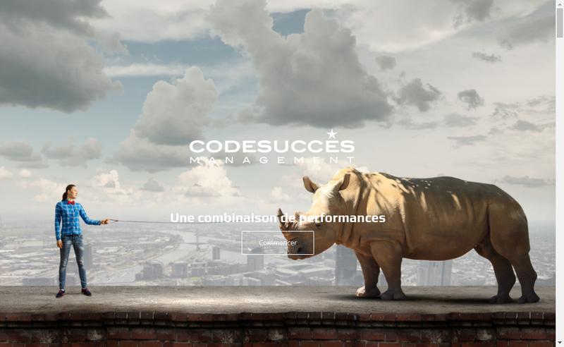 Capture d'écran du site de Codesucces Management