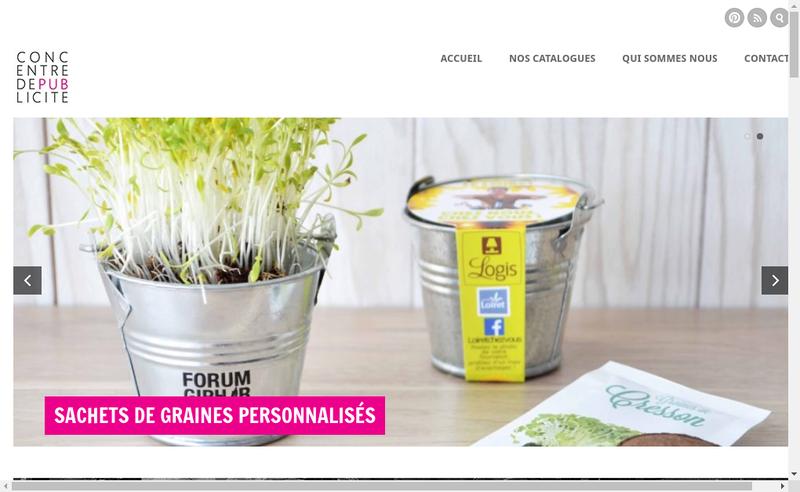 Capture d'écran du site de Concentre-de-Publicite