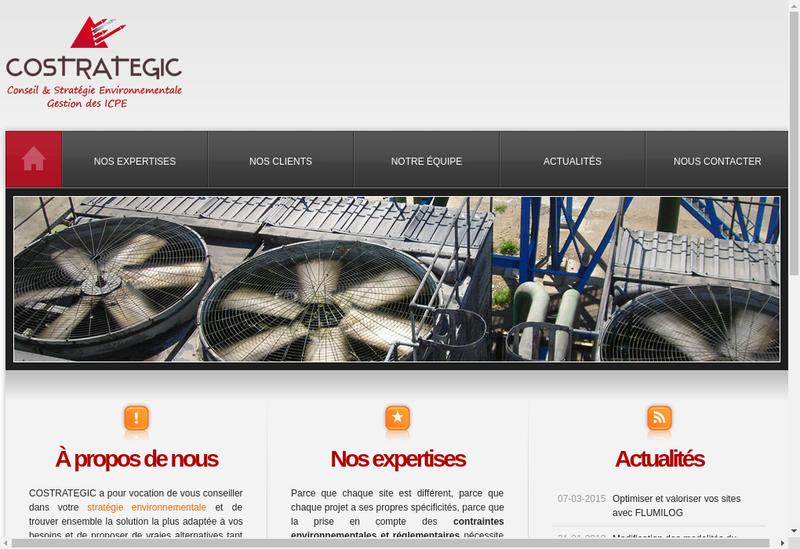 Capture d'écran du site de Costrategic