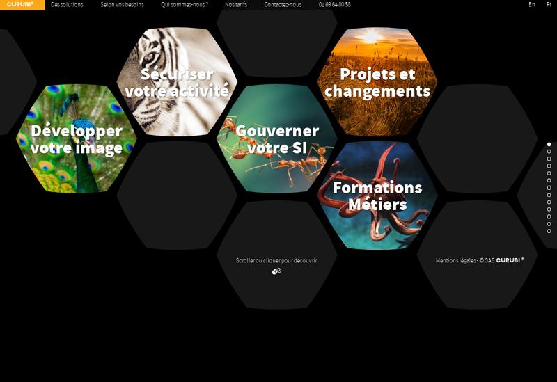 Capture d'écran du site de Curubi