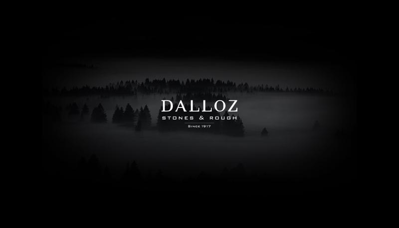 Capture d'écran du site de Dalloz Pre Setting