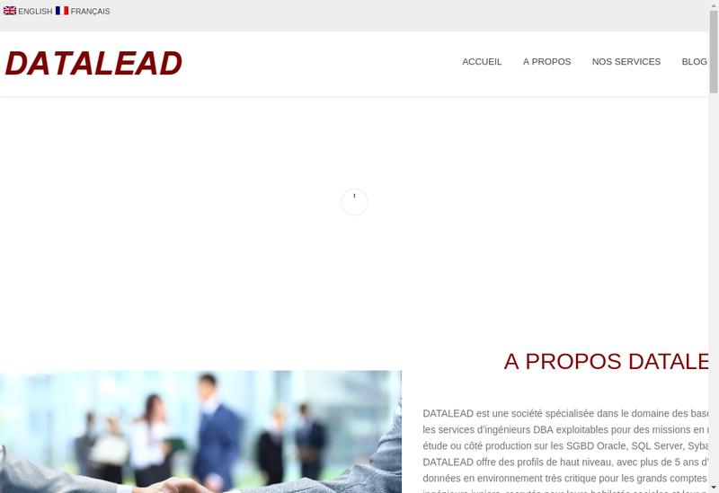Capture d'écran du site de Datalead