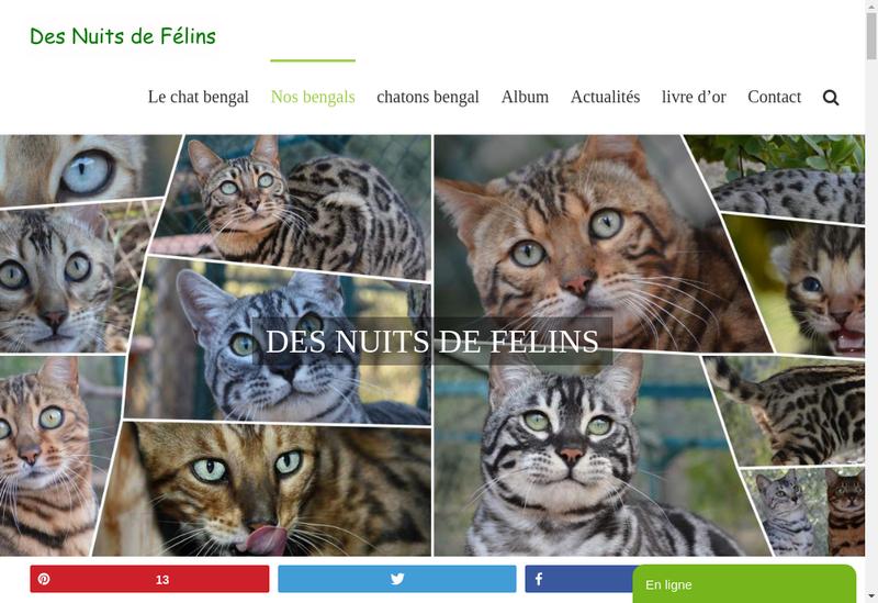 Capture d'écran du site de Des Nuits de Felins