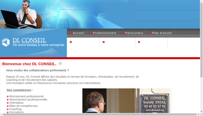 Capture d'écran du site de Dl Conseil