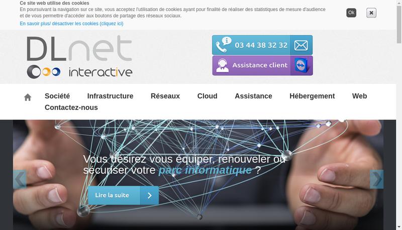 Capture d'écran du site de Dl Net Interactive
