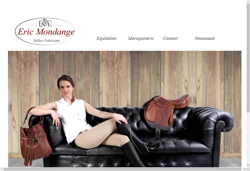 Capture d'écran du site de Le Sellier Francais