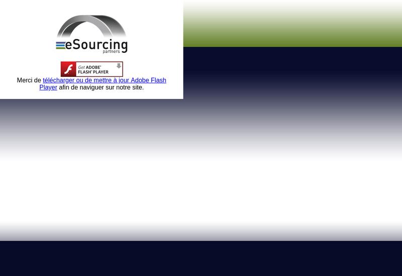 Capture d'écran du site de Esourcing Partners