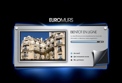 Capture d'écran du site de Euromurs