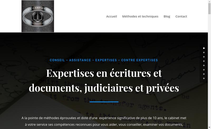 Capture d'écran du site de Graphoconsult