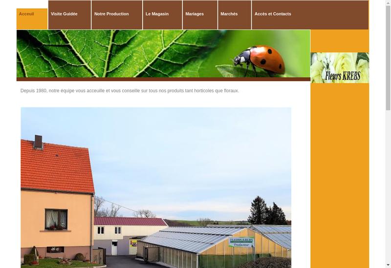 Capture d'écran du site de Fleurs Krebs
