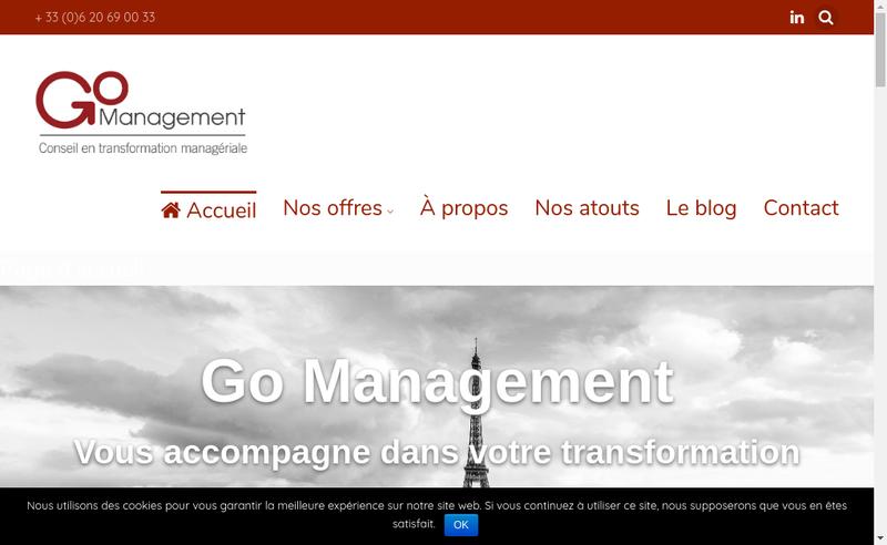 Capture d'écran du site de Go Management
