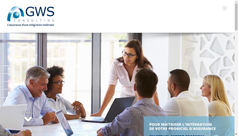 Capture d'écran du site de Gws Consulting