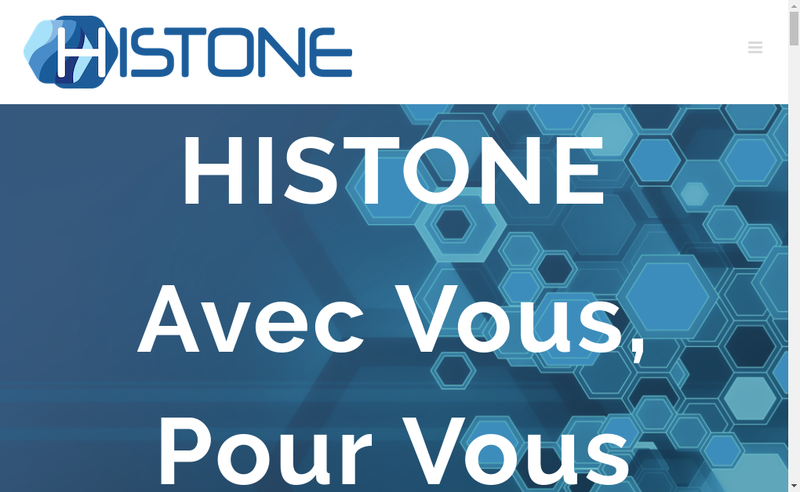 Capture d'écran du site de Histone Informatique