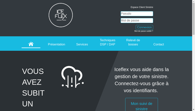 Capture d'écran du site de Iceflex