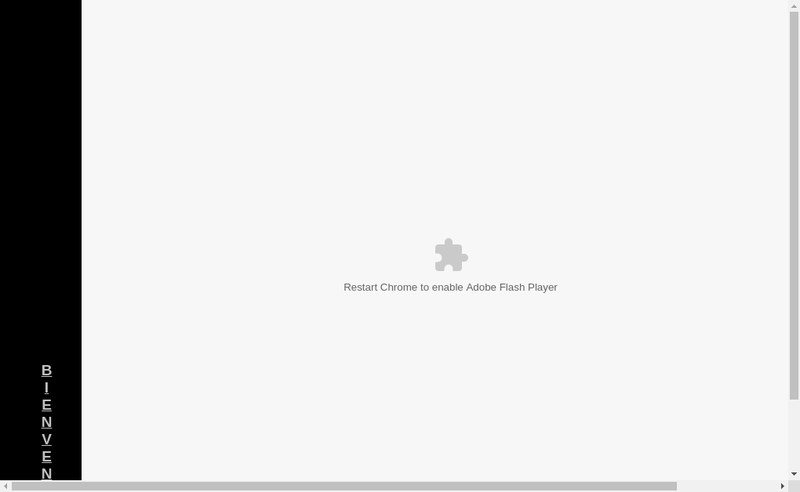 Site internet de Intelli