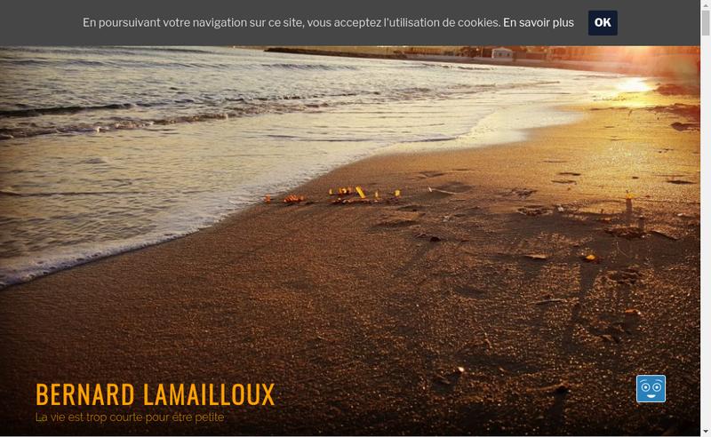 Capture d'écran du site de Bernard Lamailloux