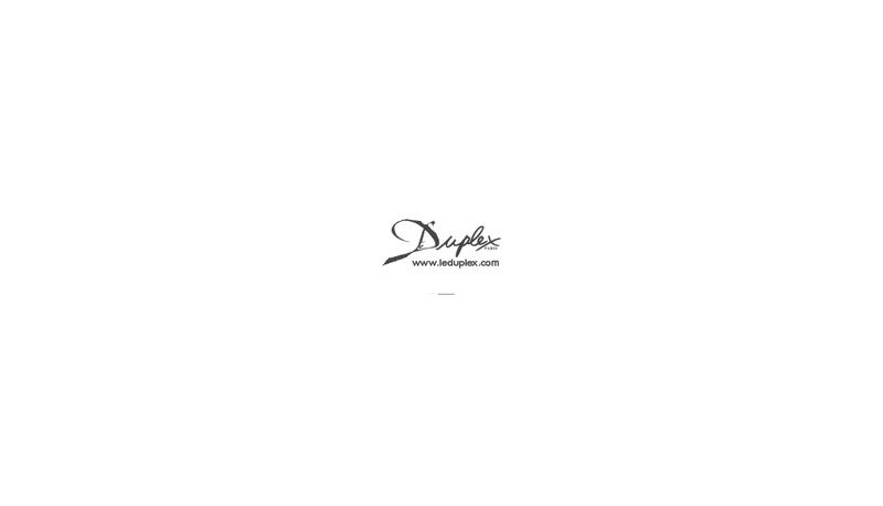 Site internet de Le Duplex