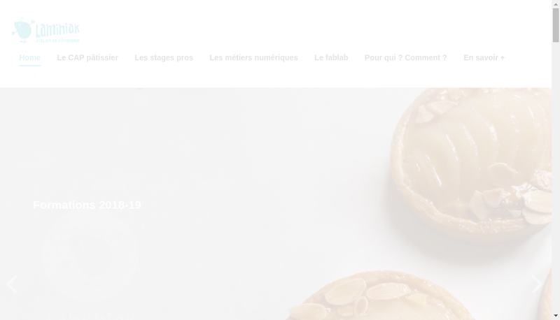 Capture d'écran du site de Laminiak