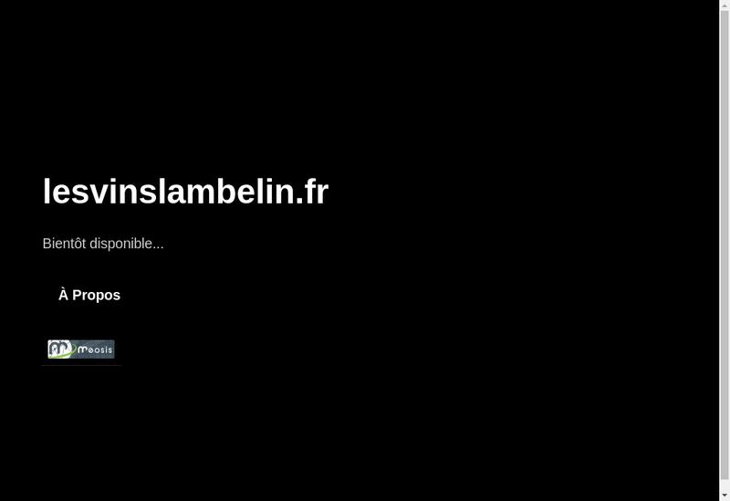 Capture d'écran du site de EURL les Vins Lambelins