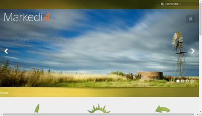 Capture d'écran du site de Markedia