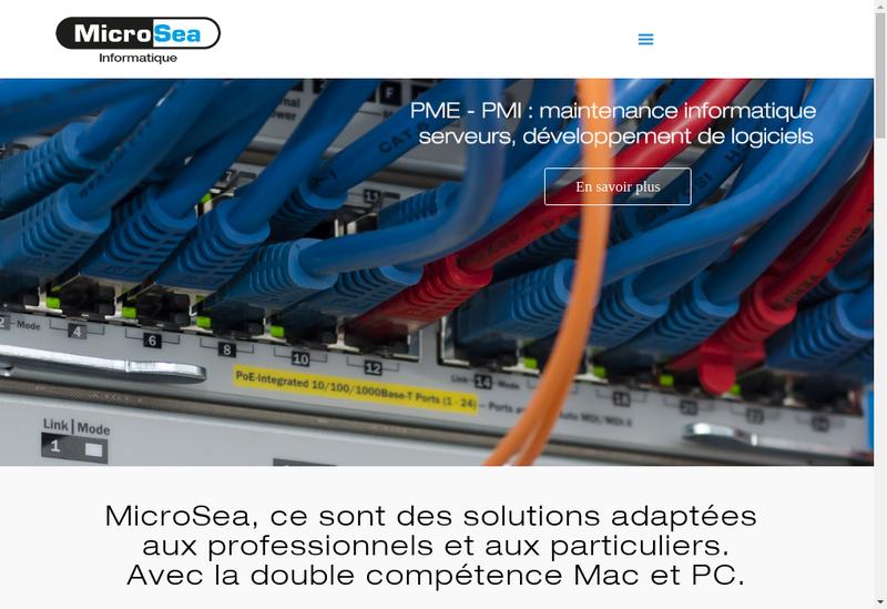 Capture d'écran du site de Microsea
