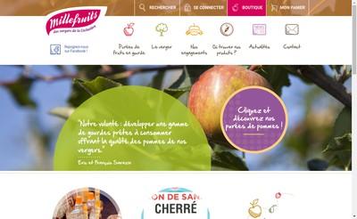 Site internet de Flash Fruits
