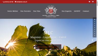 Capture d'écran du site de SAVDVF