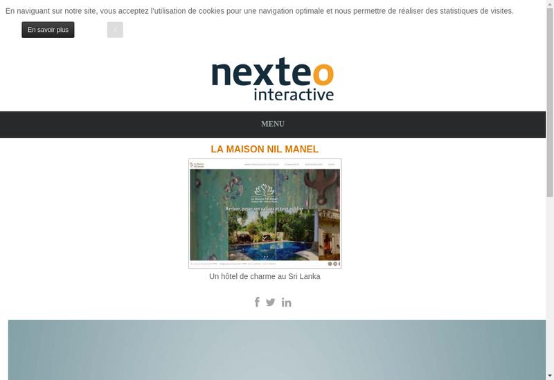 Capture d'écran du site de Nexteo Conseil