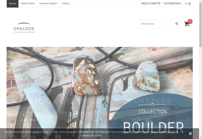 Capture d'écran du site de Opalook France