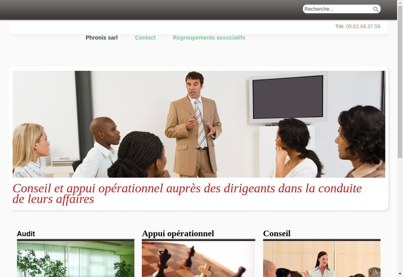 Capture d'écran du site de Phronis