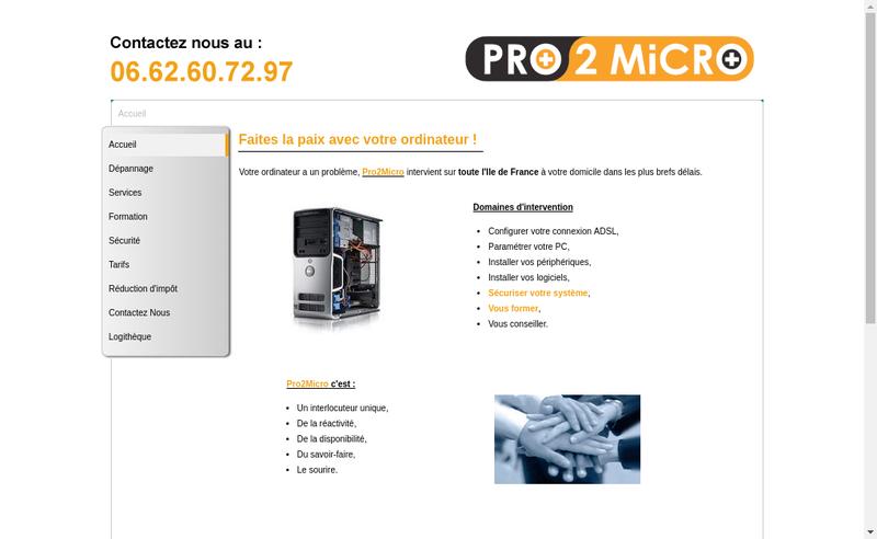 Capture d'écran du site de Pro2Micro