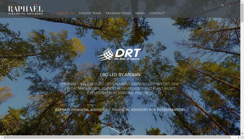 Capture d'écran du site de Raphael Financial Advisory