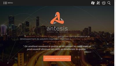 Site internet de Antesis