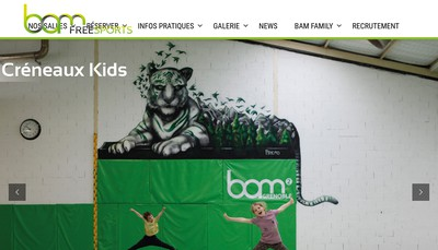 Site internet de Bam Freesports