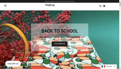 Site internet de Bangle Up