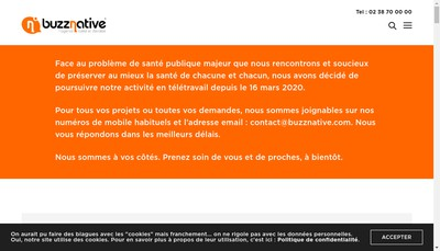 Site internet de Buzznative