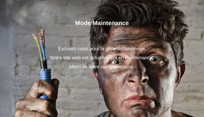 Site internet de Domo-Elec