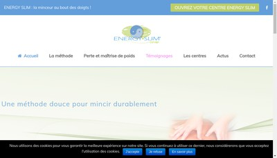 Site internet de Energy Slim Concept