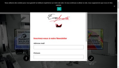 Site internet de Europamiante