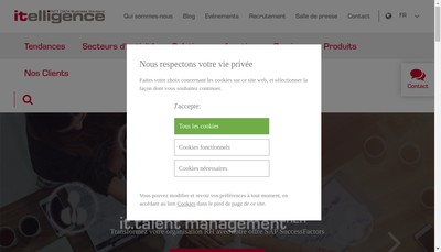 Site internet de Itelligence France