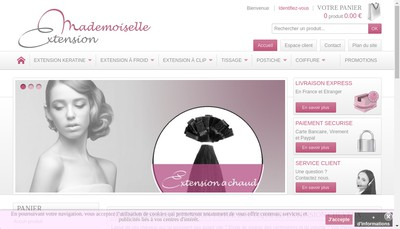 Site internet de Mademoiselle Extension