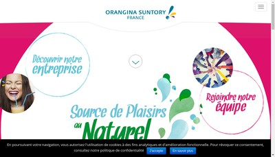Site internet de Suntory France